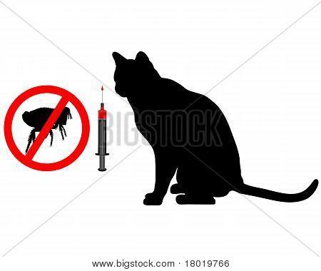 Cat Flea Vaccination