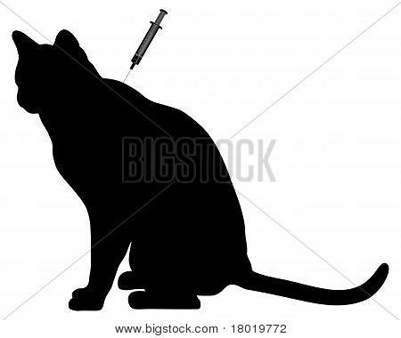Cat Vaccination