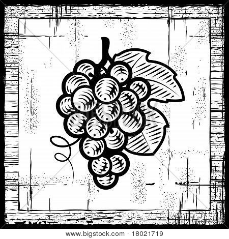 Retro grapes bunch black and white