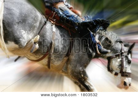 Rodeo Action - Saddle Bronc Riding