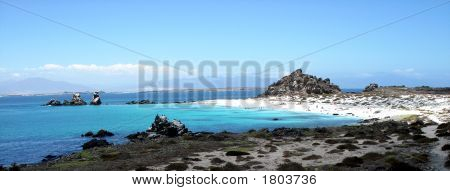 Isla Damas  Iv Region  Chile