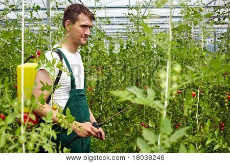 Organic Crop Protection Agent