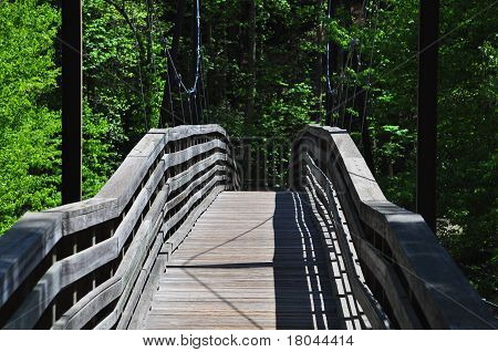 Swinging Suspended Bridge
