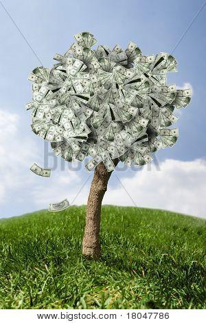 erstaunliche Money Tree auf Gras mit fallenden Blätter