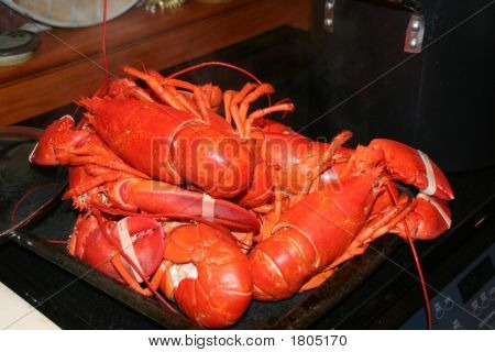 Lobsters Fresh From The Pot