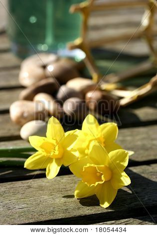 Spring Spa : Three yellow daffodils arranged on a wooden table, decorated with pebbles and candle with bamboo stand, great for summer barbeque idea.