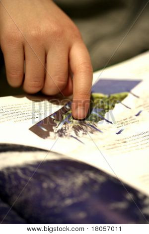 Small finger of a child pointing to an information in a book.