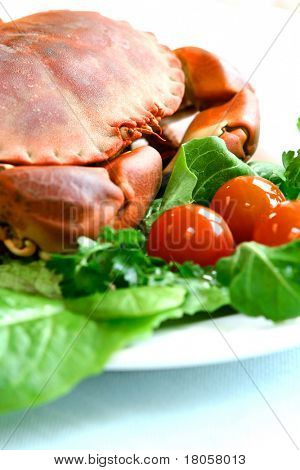 Close up of steamed fresh crab served with fresh green salad and cherry tomatoes