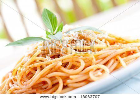 Closeup of a plate of spaghetti in tomato sauce