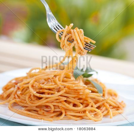Closeup of plate of spaghetti in tomato sauce