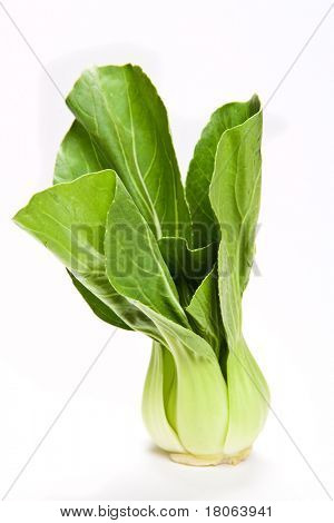 Study of a stalk of bok choi, a popular oriental vegetable