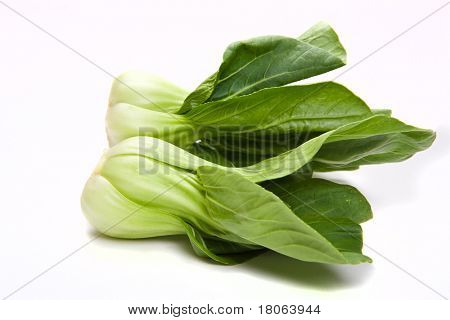 Closeup study of a bunch of pak choi, a popular oriental vegetable