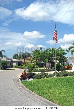 Tropical American Street 1