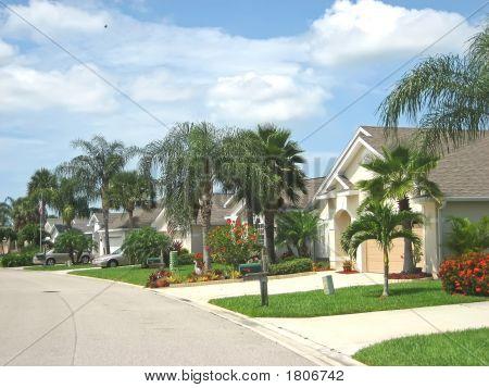 Calle de América tropical 4 Jpg