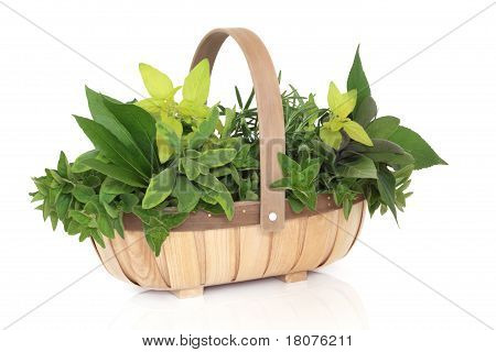 Herb Basket