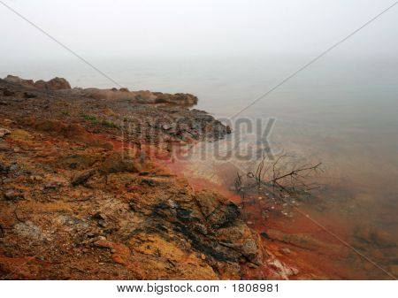 Foggy Red Shore