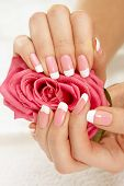 foto of french manicure  - Beautiful manicure nails with a rose over isolated white background - JPG