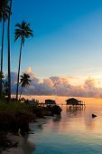 image of tropical island  - Beautiful early morning sunrise over a tropical island - JPG