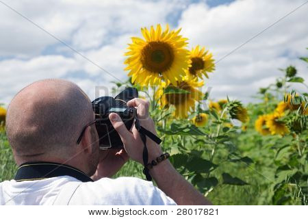 photographer making stock photo of sunflower on sky background