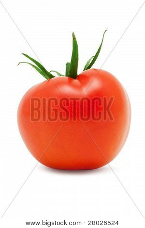 Small Red Ripe Tomato