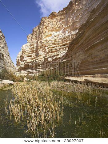 Gewässer eines Streams in Schlucht de aktuelle????? fallenden Schlammwesen.