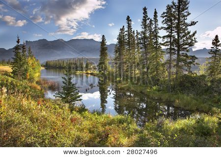 Silent lake in the early autumn morning in mountains