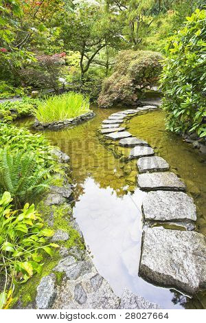 A path from the wet stones, laid through a pond in Japanese  garden