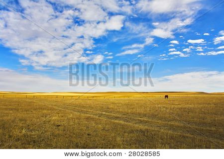 The grandiose sky of Montana above the American prairie in October