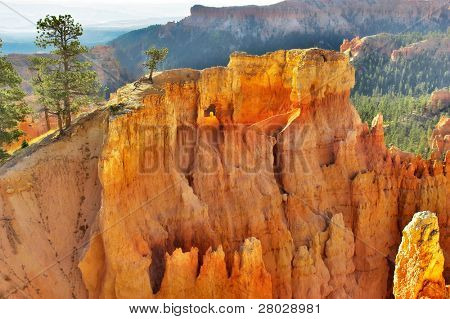 The well-known pink rocks in Bryce canyon in state of Utah USA