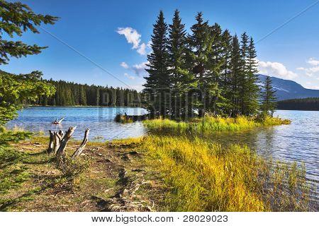 A footpath to coast of lake and small island near to coast.