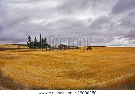 Small farm in fields of Montana after harvesting. More magnificent pictures from the American and Canadian National parks you can look hundreds in my portfolio. Welcome!