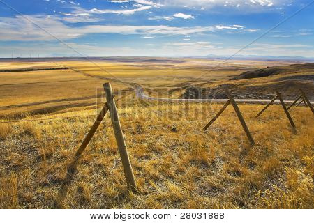 The American prairie in October. A yellow grass and the American road