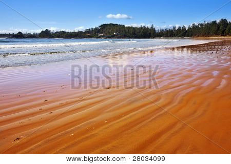 Huge sandy beach in an ocean lagoon of island Vancouver