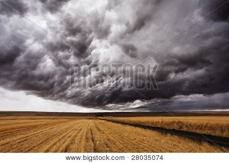 Storm front. A huge thundercloud above fields of Montana, the USA