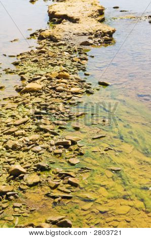 Polluted River Detail