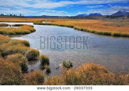 Silent soft autumn day - plain, a yellow grass and a stream in Yellowstone national park