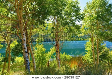 Silent picturesque Gulllake in an environment of autumn park. Travel across the USA