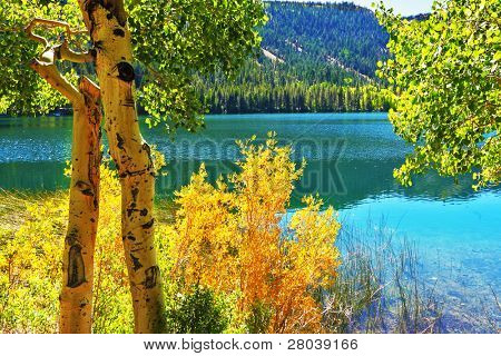 Silent picturesque Gulllake in vicinities of city Bishop in the USA