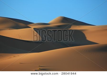 Cold  shades and traces of animals on sand of the White dune Eureka. Deadh Valley of the USA