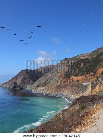 Triangular flight of gray pelicans over rocky coast and azure water of Pacific ocean