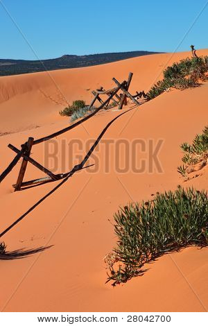 Yellow sand dunes and a homemade fence of sticks for the detention of snow.