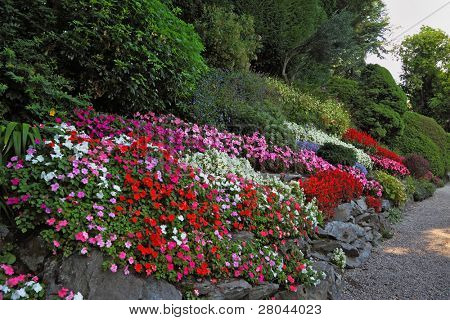 Wonderful vibrant flowerbeds and comfortable path in an exotic park. Lake Como, Villa Carlotta