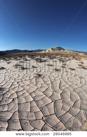 Dawn in Death Valley. Dry brush on white cracked soil. Rhotograph Fisheye lens