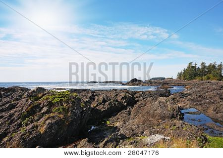 Vancouver Island. On the Pacific beach begins tide, wet sand, and puddles