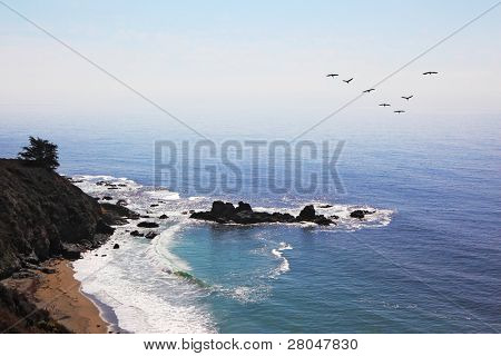 Triangular flight of gray pelicans over rocky coast of Pacific ocean