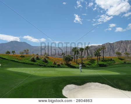 Golf Course Caddy Desert