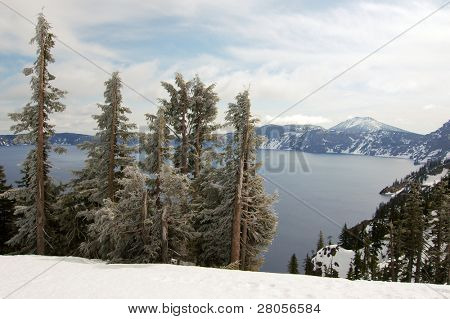 Crater Lake forest and mountains