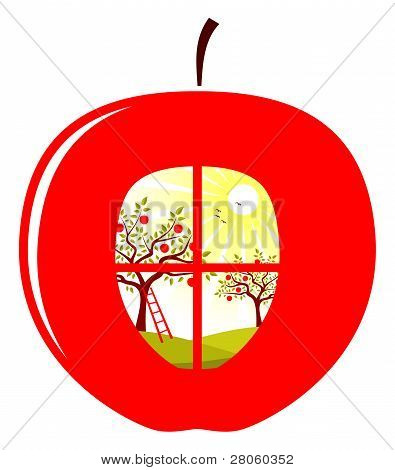 Apple Orchard In Apple