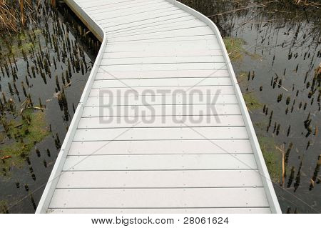 wooden boardwalk through a bog