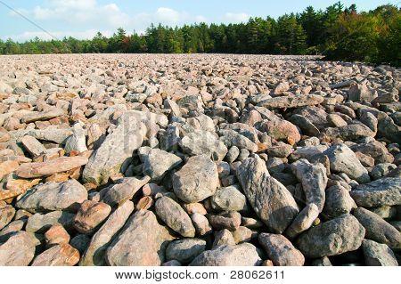 Hickory Run boulder field
